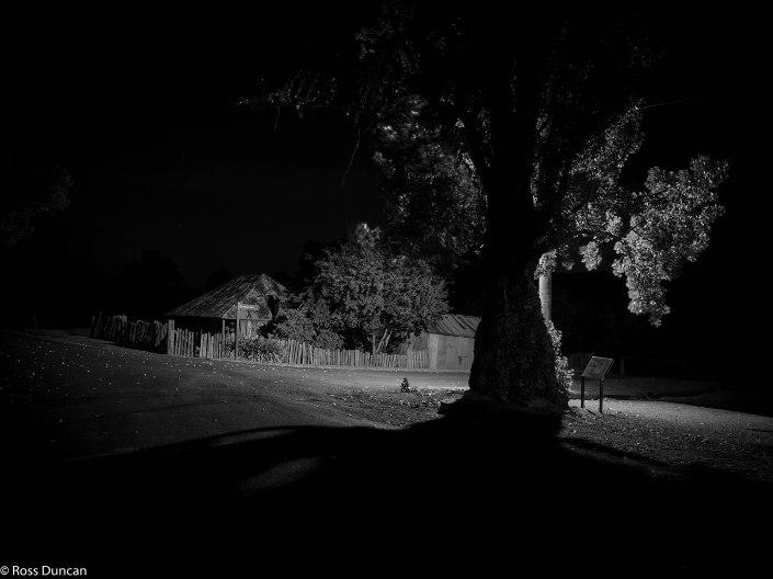 Nightscape